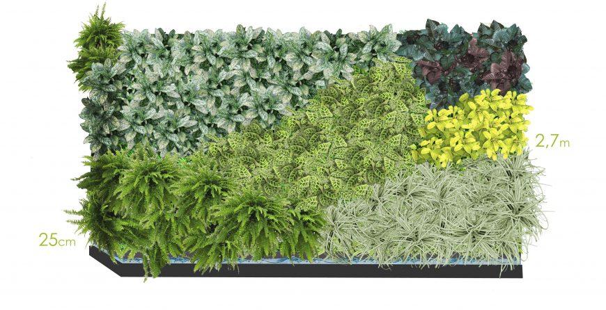 Jardines-plantas-diseño-decoración
