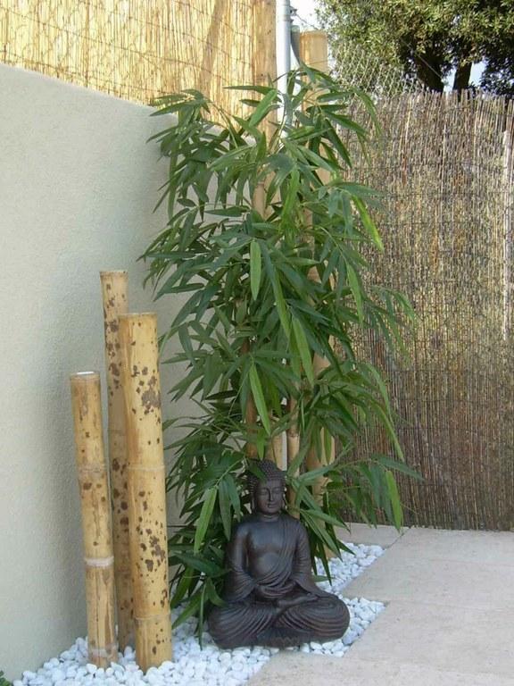 decoracion bambu